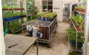 Sale 8677A - Lot 55 - Five galvanised metal potting stands including three, three tier large and two tiered table and tubs (not plants)