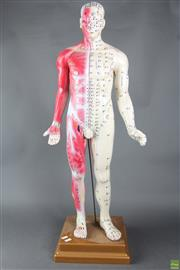 Sale 8608 - Lot 16 - Acupuncture Male Mannequin on Stand (H 85cm)