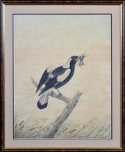 Sale 8415 - Lot 575 - Neville Cayley (1853 - 1903) - Untitled, 1889 (Magpie) 58.5 x 46cm