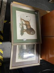 Sale 8936 - Lot 2090 - Collection of Handcoloured Engravings Depicting Animals (7)