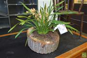 Sale 8390 - Lot 1327 - Orchids in Hollow Log