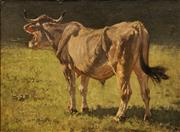 Sale 8597 - Lot 537 - Richard Voltz (1859 - 1933) - Untilted (Cow in Paddock) 41.5 x 56cm