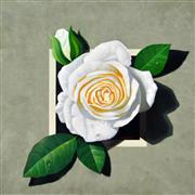 Sale 8323A - Lot 11 - Michael John Taylor (1939 - ) - White Rose 70 x 70cm
