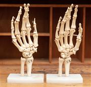 Sale 8795A - Lot 79 - A pair of scale skeletal hand models on stands, height 25cm