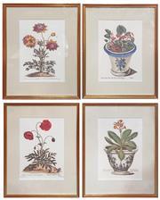 Sale 8917 - Lot 1074 - Four Botanical Offset Lithographic Prints (Frame 45.3 x 36.3cm)