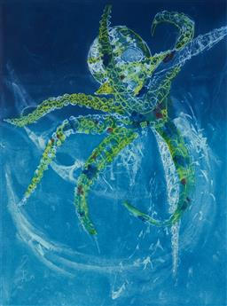 Sale 9112A - Lot 5038 - Frank Hodgkinson (1919 - 2001) - Octopus, 1997 60 x 44.5 cm (frame: 95 x 76 x 4 cm)