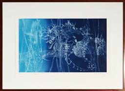 Sale 9130S - Lot 35 - Frank Hodgkinson (1919 - 2001) - Seahorse, 1997 50 x 81.5 cm (frame: 85 x 116 x 4 cm)