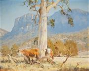 Sale 8510 - Lot 504 - Les Graham (1942 - ) - The Sunlit Gum Carpertee Valley 39.5 x 49.5cm