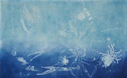 Sale 9130S - Lot 79 - Frank Hodgkinson (1919 - 2001) - Reef, 1997 50 x 81 cm (frame: 85 x 116 x 4 cm)