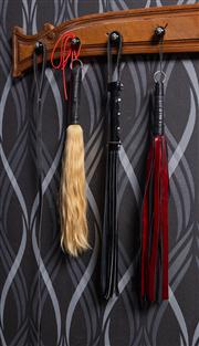 Sale 8761A - Lot 70 - A small quantity of whips including hair, suede and leather