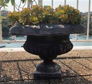 Sale 8902H - Lot 182 - A cast iron planter, planted with succulents