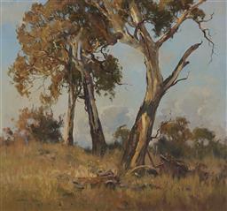 Sale 9161A - Lot 5048 - CHRISTINE HUBER (1936-) - Tall Gums of Milthorpe 65 x 70 cm (signed: 90 x 95 x 6 cm)