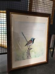 Sale 8752 - Lot 2040 - K Maken - Robin watercolour, 81.5 x 66.5cm, signed lower left