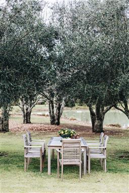 Sale 9200P - Lot 48 - A set of six teak dining chairs, Height of back 96cm x Width 65cm x Depth 53cm