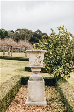 Sale 9200P - Lot 42 - A GRC urn on plinth, Height 175cm x Diameter 70cm