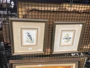 Sale 8707 - Lot 2060 - Pair of Framed Bird Prints