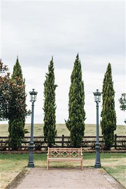 Sale 9200P - Lot 69 - A tri-diamond shaped back teak bench, Height of back 90cm x Length 150cm x Depth 63cm