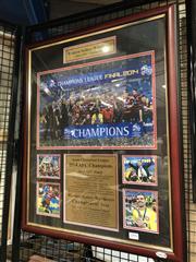 Sale 8828 - Lot 2066 - Western Sydney Wanderers 2014 AFC Champions, framed