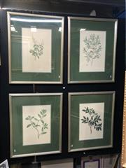Sale 8841 - Lot 2047 - Group of (4) coloured plates from Banks Florilegium