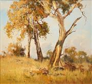 Sale 8665A - Lot 5028 - Christine Huber (1936 - ) - Sunlit Gums, Millthorpe 65 x 70cm