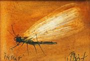 Sale 8813 - Lot 579 - Kevin Charles (Pro) Hart (1928 - 2006) - Insect 9 x 13cm