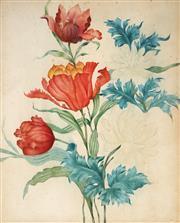Sale 9055A - Lot 5029 - Flemish School (XVIII) - Tulips & Chrysanthemums c.1750) 39 x 22 cm (frame: 64 x 52 x 4 cm)