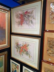 Sale 8695 - Lot 2008 - Gloria Muddle, 2 works: Possum and Red Bottlebrush, watercolour, 61 x 77cm (frame size) signed lower right