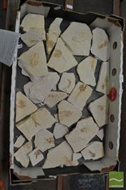 Sale 8480 - Lot 1165 - Box of Fossils with Identifier