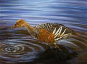 Sale 8443 - Lot 599 - Judy Scotchford (XX) - Just a drop in the pond (Plumbed Whistle Duck) 29 x 39cm