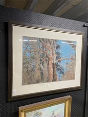Sale 8936 - Lot 2079 - Artist Unknown Canopy pastel, 82 x 101cm (frame), signed lower left