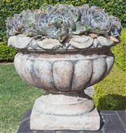 Sale 8575H - Lot 8 - Four composite stone pots of classical form, planted with succulents H Pot: 36cm Diam at top: 44cm