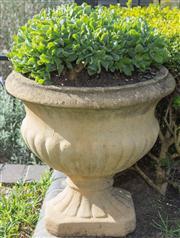 Sale 8575H - Lot 5 - A composite stone urn potted with succulents H: 46cm Diam: 44cm