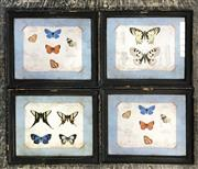 Sale 8941 - Lot 2035 - Set Of Timber Framed Ornithological Prints Depicting Butterfiles (29.5 x24.5cm)