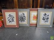 Sale 8407T - Lot 2081 - Paul Jones (1924 - 1997) (4 works) - Botanical Studies 36 x 31cm (frame size)