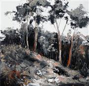 Sale 8565 - Lot 517 - Cheryl Cusick - Bush Shadows 100 x 100cm
