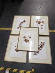 Sale 8978 - Lot 2089 - Set of (5) Botanical Specimens 63 x 49cm, each (frame)