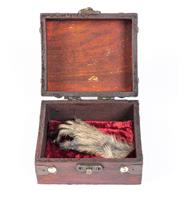 Sale 8586A - Lot 102 - A petrified monkey hand in decorative box