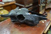 Sale 8489 - Lot 1068 - Painted Cow Skull
