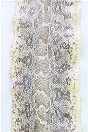 Sale 8852 - Lot 33 - Python Skin L:188cm