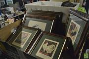 Sale 8425T - Lot 2081 - 8 Framed Bird Prints