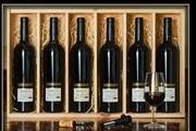 Sale 8515W - Lot 15 - 6x Burton Premium Wines 'The Ultimate Wine Collection' Cabernet Sauvignon, Coonawarra - vintages 1999 to 2004.  Multi award winn...