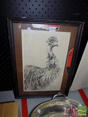 Sale 8474 - Lot 2096 - Framed Ink Drawing of an Emu, signed