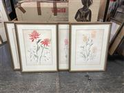 Sale 9087 - Lot 2056 - Susan Cadby (5 works) Australian Wildflowers lithographs  ed. 26/50, 75 x 56cm (frames) , each signed