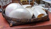 Sale 8746 - Lot 1006 - A basket of nautilus shells