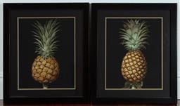 Sale 9134H - Lot 72 - Two framed prints depicting pineapples 69cm x 58cm