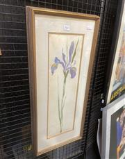 Sale 9087 - Lot 2023 - Susan Cadby Iris, 1987 watercolour (AF) 71 x 32cm signed and dated