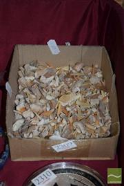 Sale 8509 - Lot 2309 - Large Collection Fossil Shark Teeth