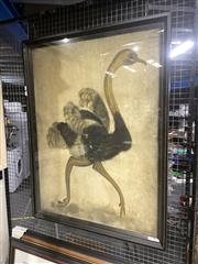 Sale 8888 - Lot 2087 - Decorative Print of an Ostrich