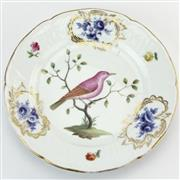 Sale 8356 - Lot 45 - German 19th Century Ornithological Plate