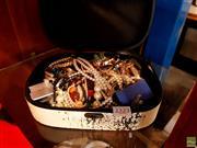 Sale 8582 - Lot 2323 - Case of Costume Jewellery